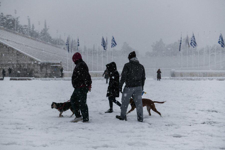 Người dân thủ đô đi giữa trời tuyết rơi tại khu vực Zappelon. Khung cảnh được ví như xứ sở thần tiên vào mùa đông của Athens.